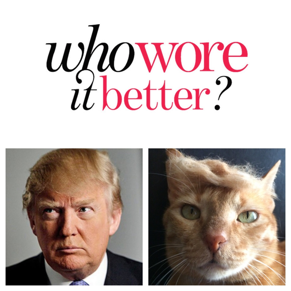 """25 Most Hilarious """"Who Wore it Better"""" Pics"""