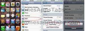 Delete Safari History iPad and iPhone