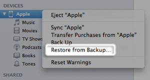 Restore from Backup Using iTunes