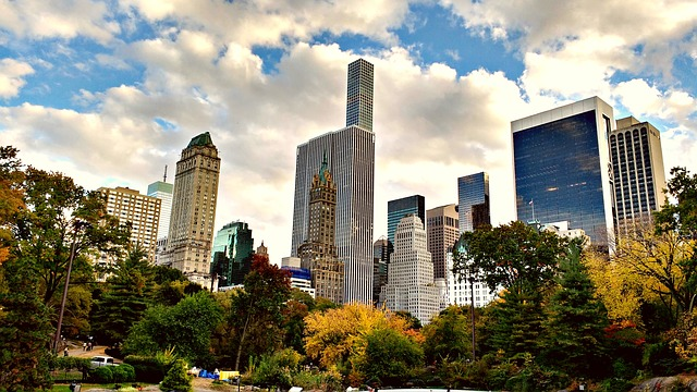 Central Park New York | Cool Things to Do In New York City NYC