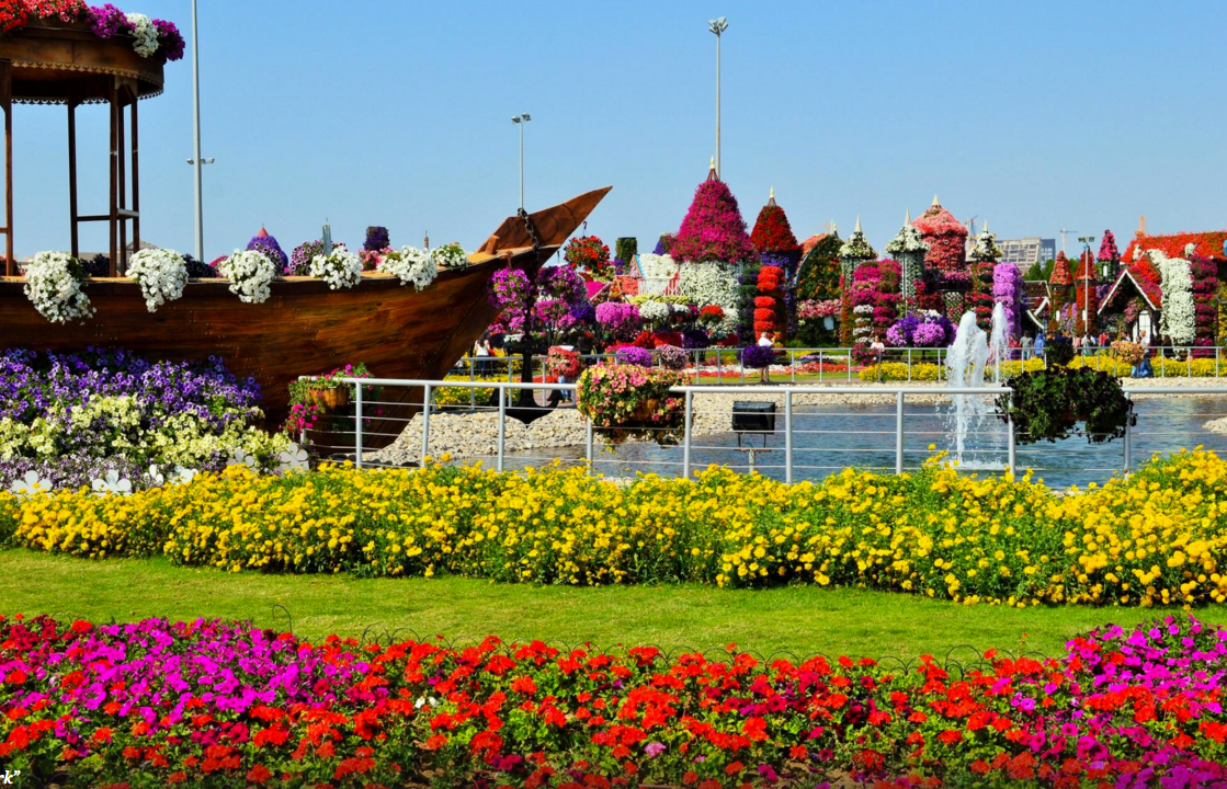 Miracle Garden Dubai | Top places to Visit in Dubai