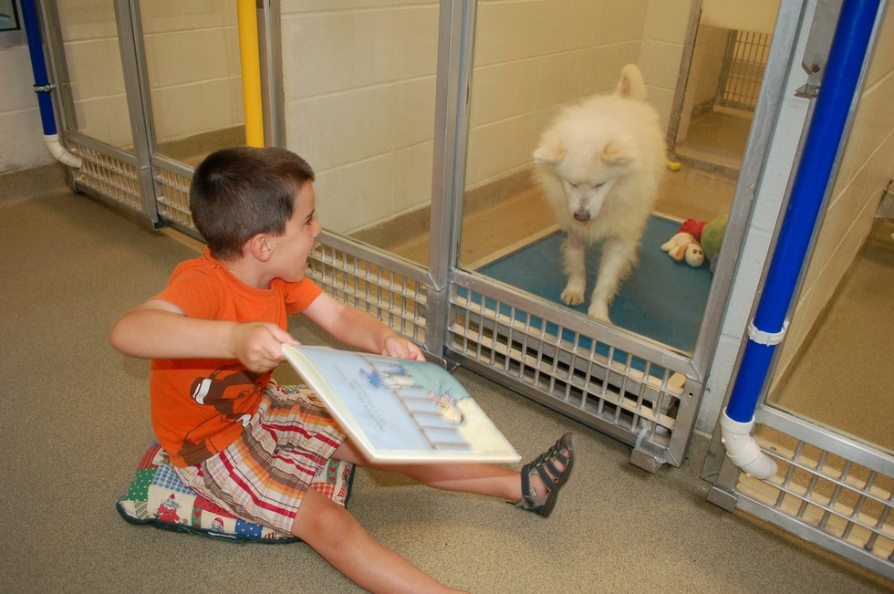 Kids reading to dogs in St Louis
