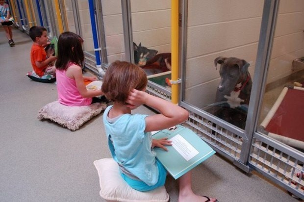 Kids reading to dogs