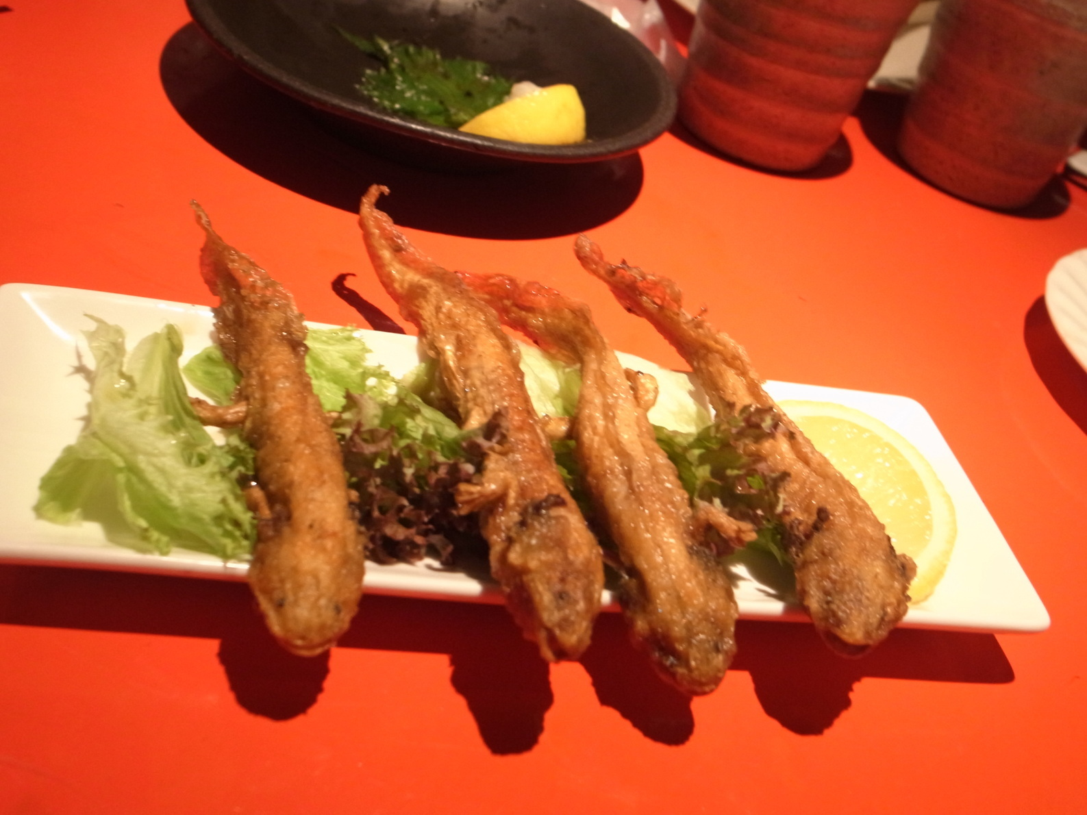 Deep Fried Salamanders | A Restaurant In Japan Sells the World's Most Bizarre Dishes.