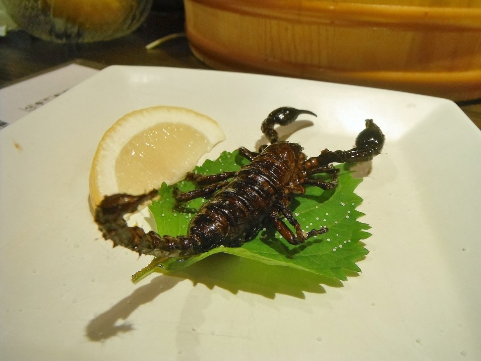 Scorpion | A Restaurant In Japan Sells the World's Most Bizarre Dishes.
