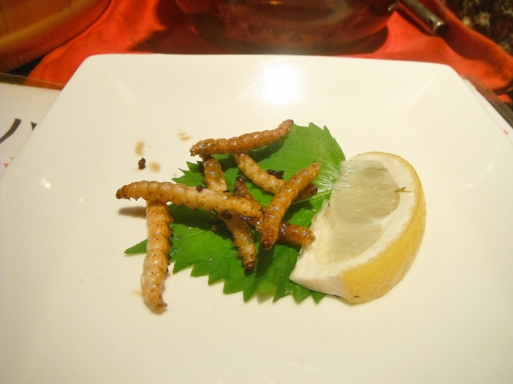 Worms | A Restaurant In Japan Sells the World's Most Bizarre Dishes.
