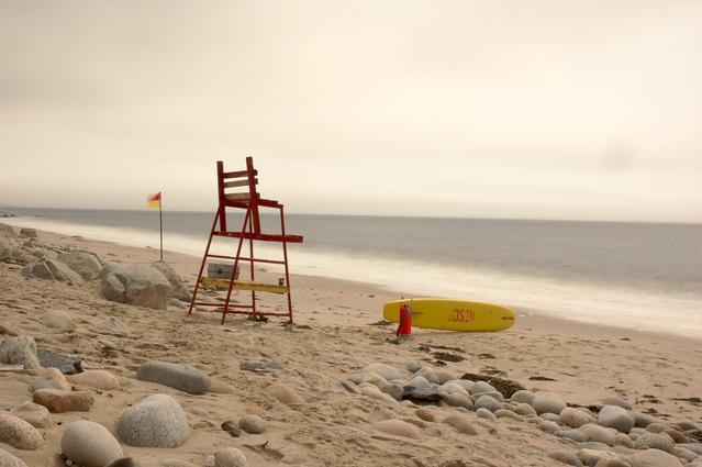 windy beach via Free Images
