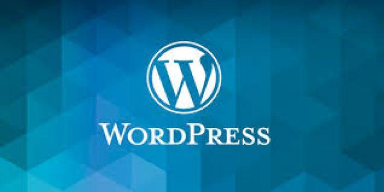 WordPress as CMS