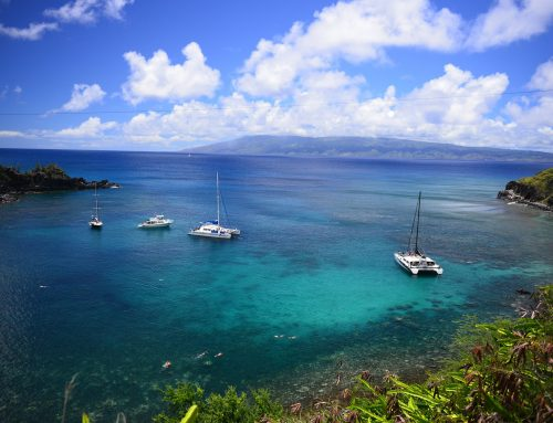 Best Snorkeling Destinations to Add your Vacation List