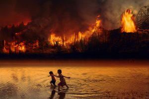 Amazon Fire - Debongo