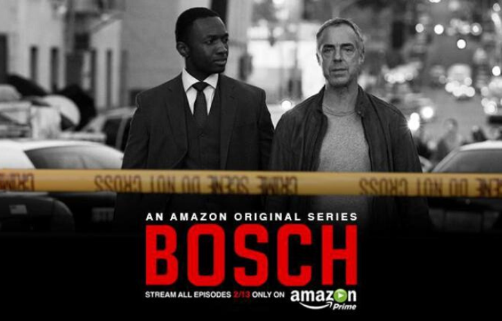 Bosch Web Series - Debongo