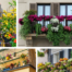 Balcony Garden Ideas and Tips for You