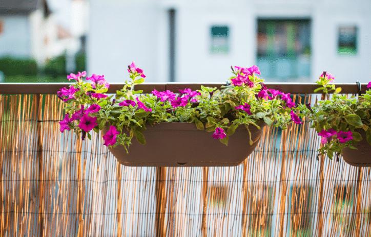 Railing planters