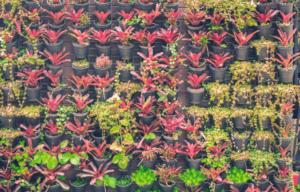 Vertical-planters