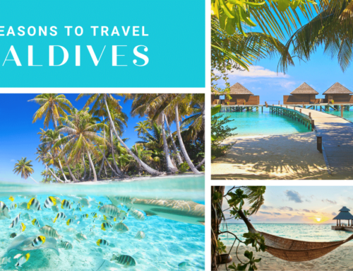 Top 5 Reasons To Add Maldives To Your Bucket List