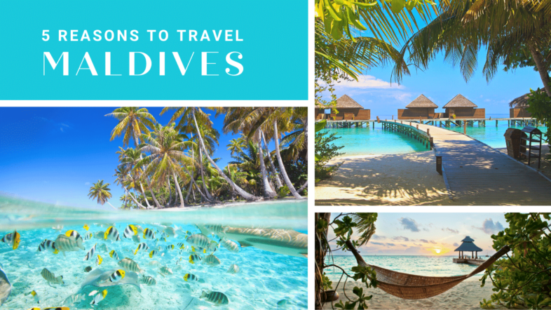 Top 5 Reasons To Add Maldives To Your Bucket List - Debongo