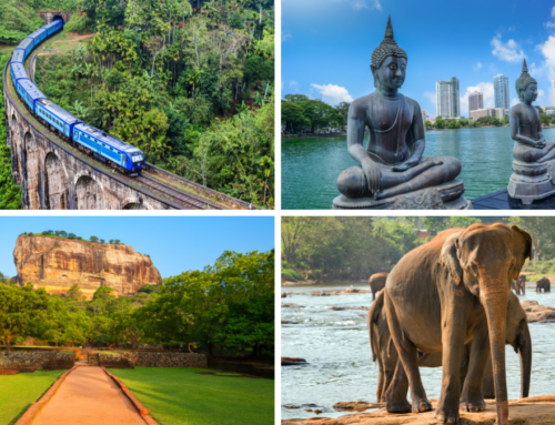 Top Reasons To Visit Sri Lanka