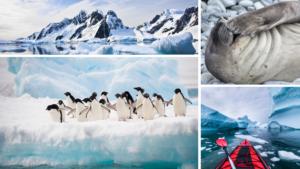5 facts of antarctica