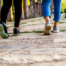 8 Health Issues That Could be Aided by Walking
