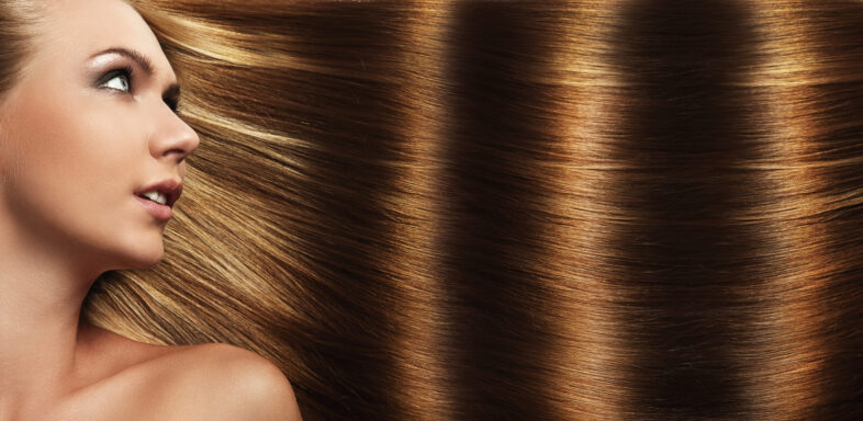 Best Oils for Hair Health