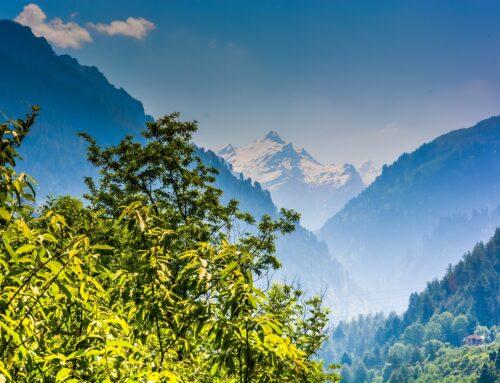 Amazing Tourist Spots to Visit in Shimla
